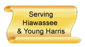 Serving Hiawassee and Young Harris